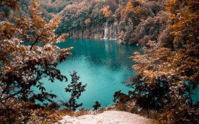 A mente é como as águas de um lago